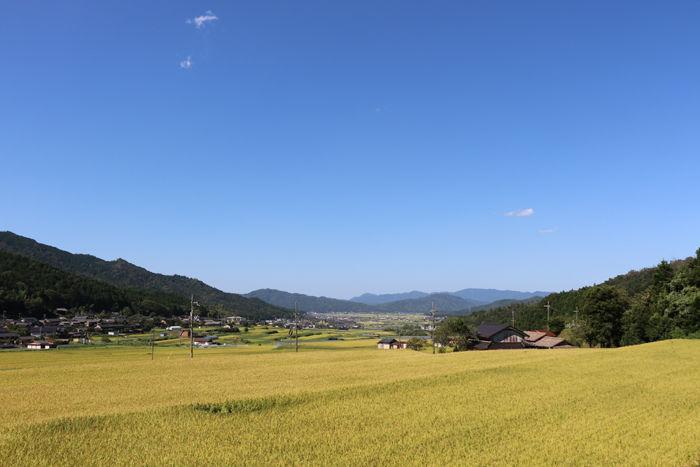 京都・与謝郡与謝野町・字与謝地区20160831-1