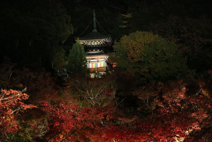 京都・左京区・禅林寺【永観堂】20131123-9