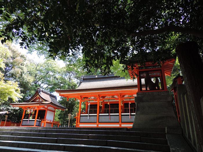 京都伏見稲荷大社6