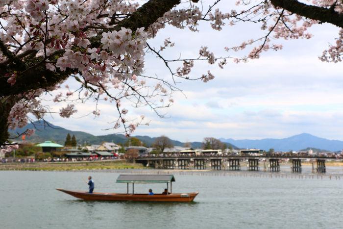 京都・右京区・渡月橋界隈20160402-10