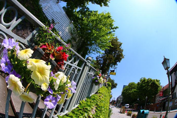 兵庫・中央区・【魚眼風景】北野異人館街20150427-4