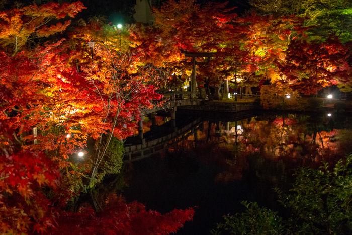 京都・左京区・禅林寺【永観堂】20161116-7