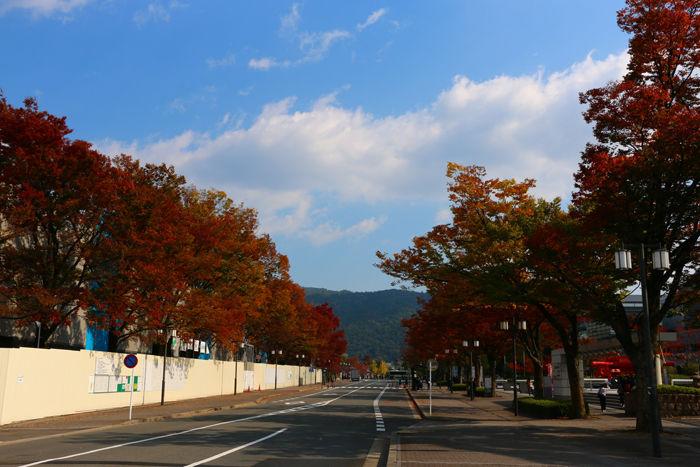 京都・左京区・京都市勧業館【みやこめっせ】20141107-1