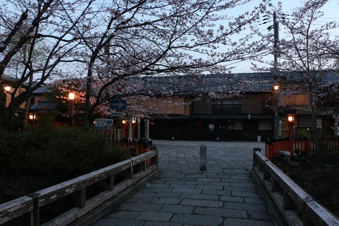 京都・東山区・祇園白川20160402-7