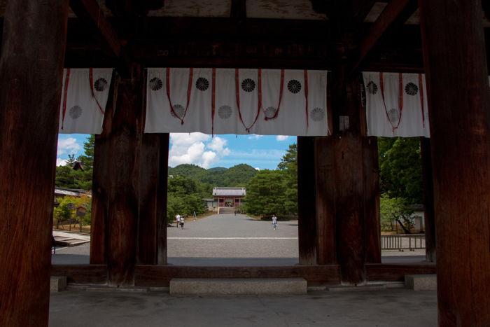 京都・右京区・仁和寺20170706-1