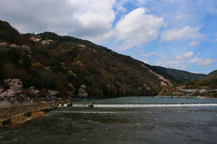 京都・右京区・渡月橋界隈20160402-5