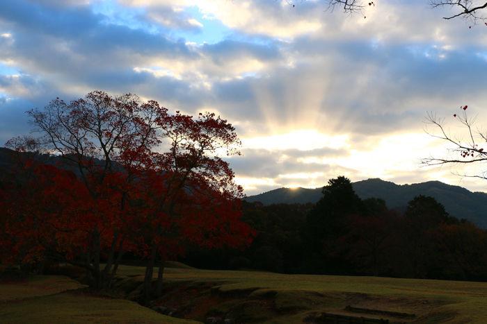 奈良・奈良市・奈良公園20141104-4