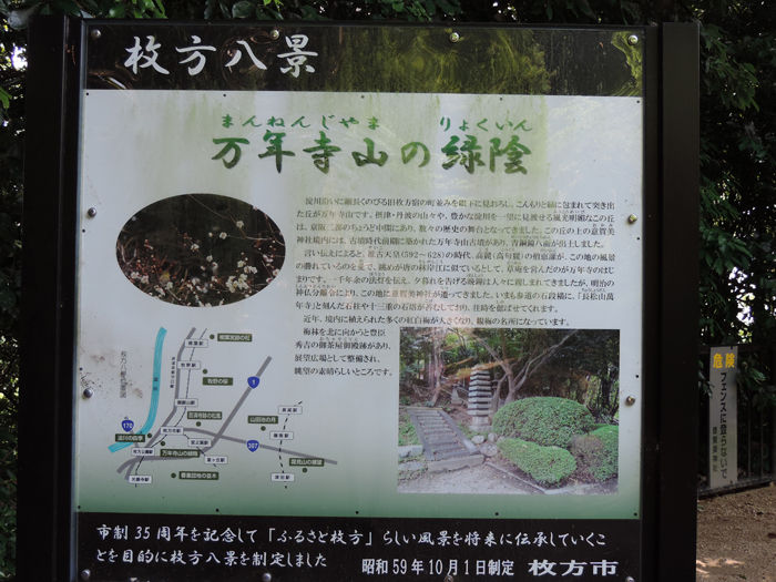 枚方意賀美神社7