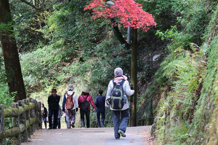 大阪・箕面市・箕面の滝20131120-2-10