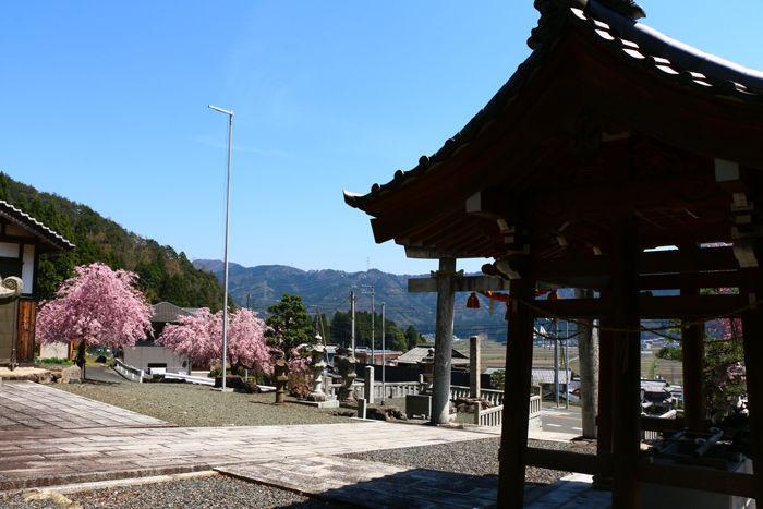 滋賀・長浜市・矢合神社20160412-5