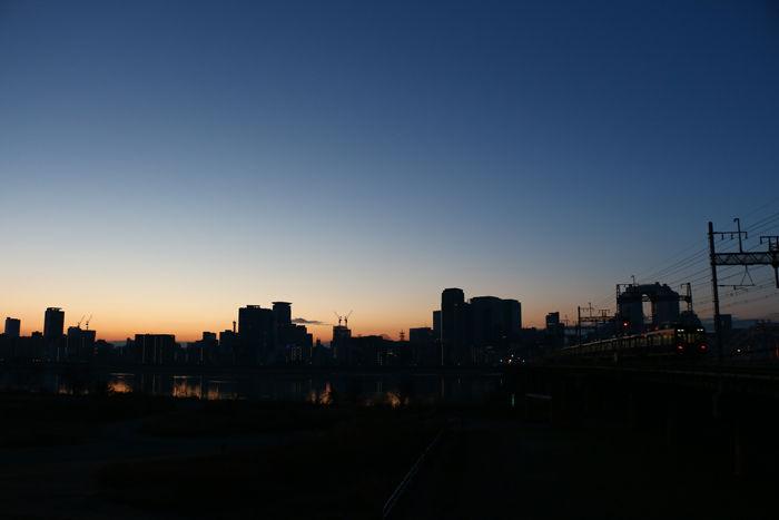 大阪・淀川区・淀川河川公園十三野草地区20160116-6