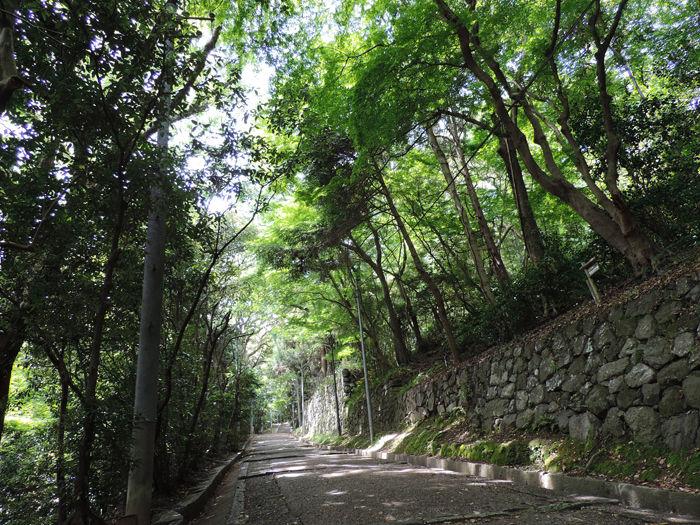 京都石清水八幡宮1-6