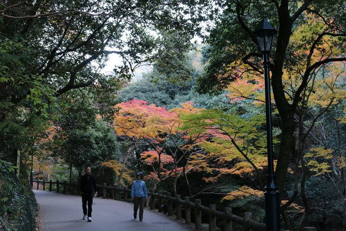 大阪・箕面市・箕面の滝20131120-1-3