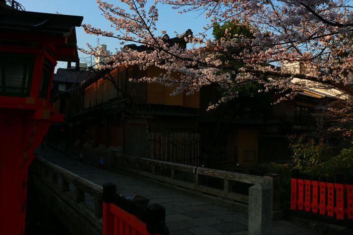 京都・東山区・祇園白川20150331-3
