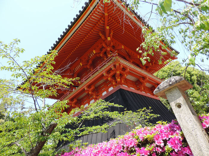 京都世界遺産総本山仁和寺5