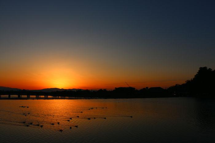 京都・右京区・渡月橋界隈20160218-11