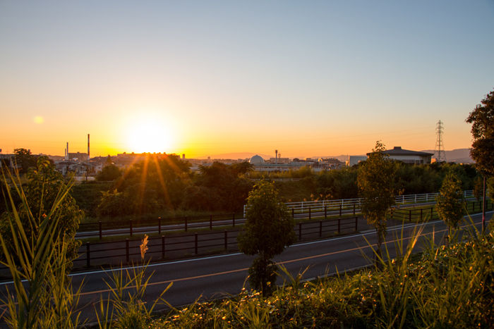 大阪・枚方市・山田池公園20161102-5