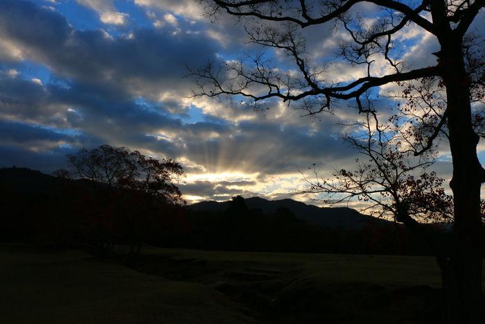 奈良・奈良市・奈良公園20141104-5