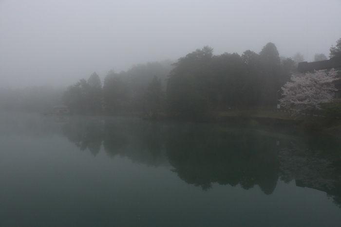 京都・福知山市・三段池公園20160406-4