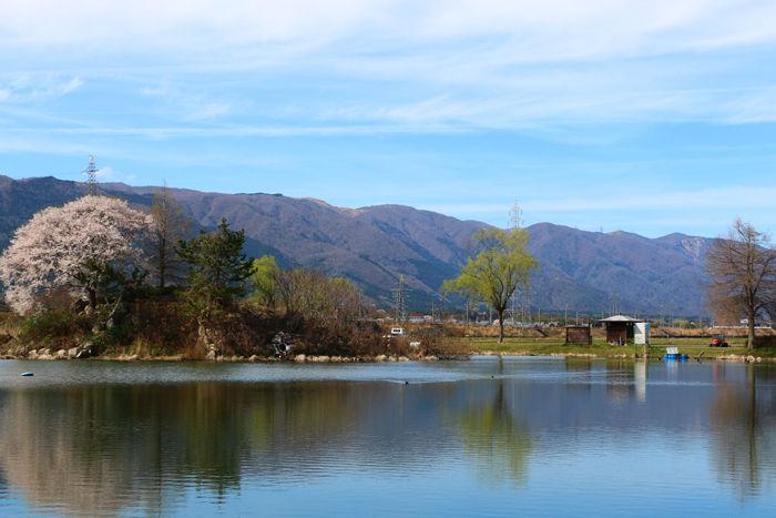 滋賀・高島市・貫川内湖20160405-1