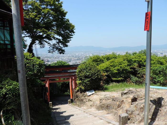 京都伏見稲荷大社15