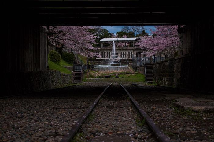 京都・左京区・蹴上インクライン20170412-2