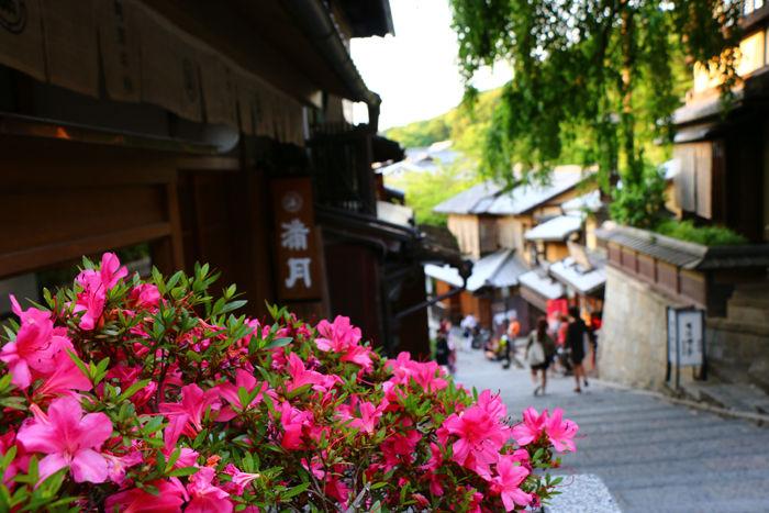 京都・東山区・八坂神社~産寧坂(三年坂)界隈20150601-1