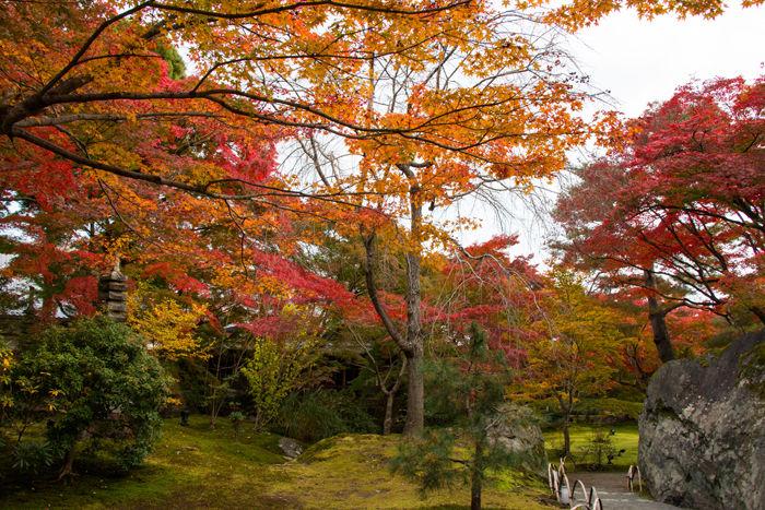 京都・右京区・宝厳院20161117-7