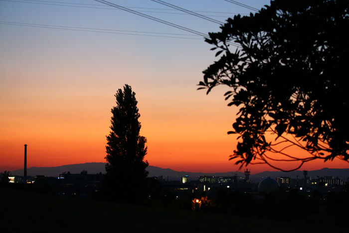 大阪・枚方市・山田池公園20141008-2