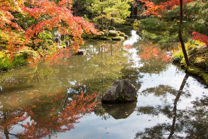 京都・北区・等持院20161116-8