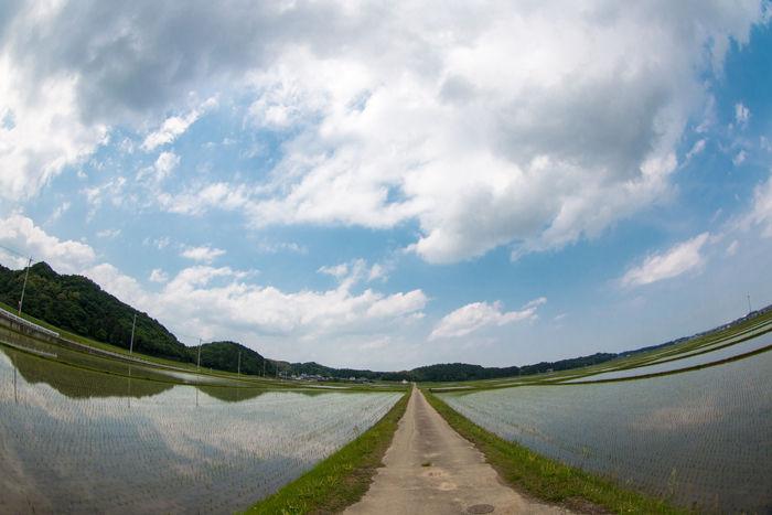 三重・松阪市・【魚眼風景】大阿坂町地区20170514-1