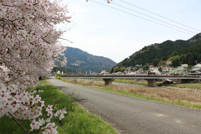 兵庫・朝来市・和田山町加都地区20160406-4