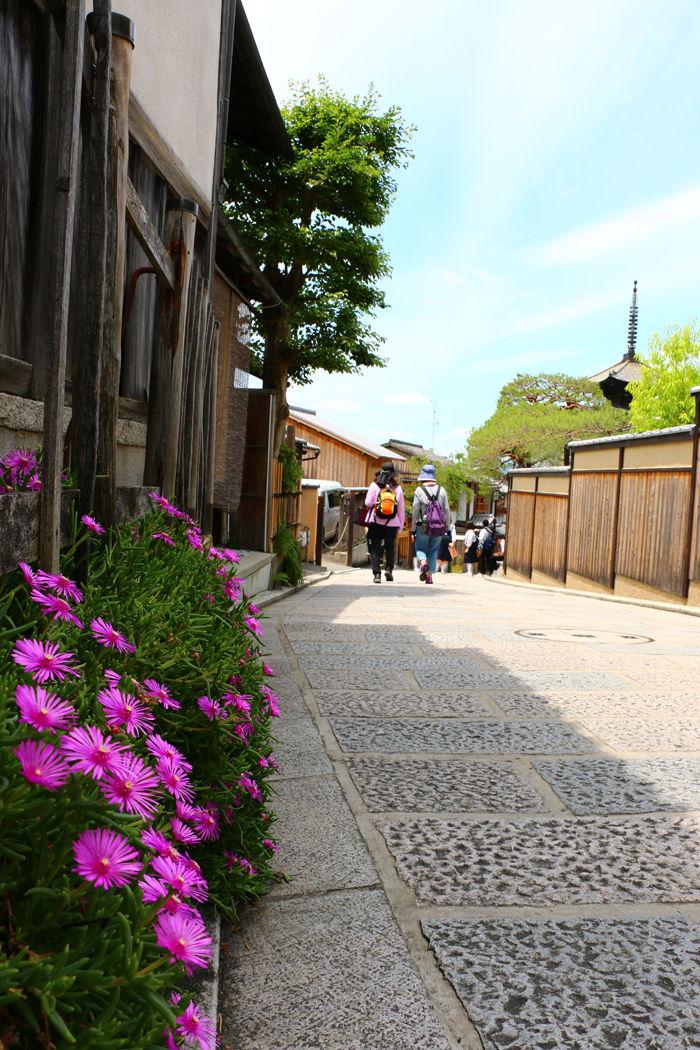 京都・東山区・八坂の塔20160601-1