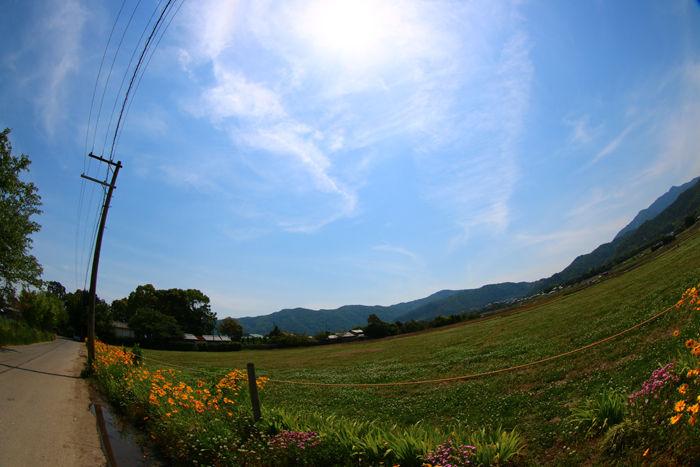 京都・右京区・【魚眼風景】広沢池界隈20150527-1