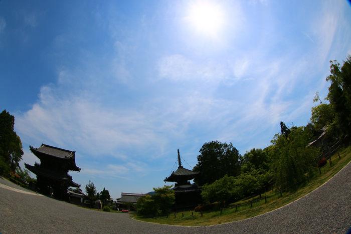 京都・右京区・【魚眼風景】清凉寺20150527-3