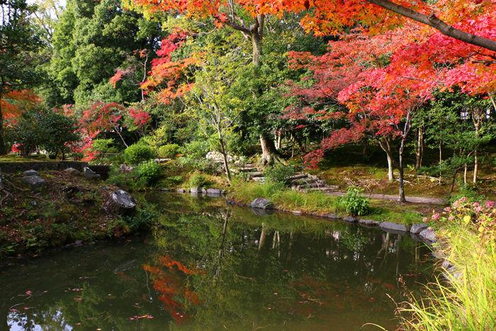 京都・北区・等持院20151121-11