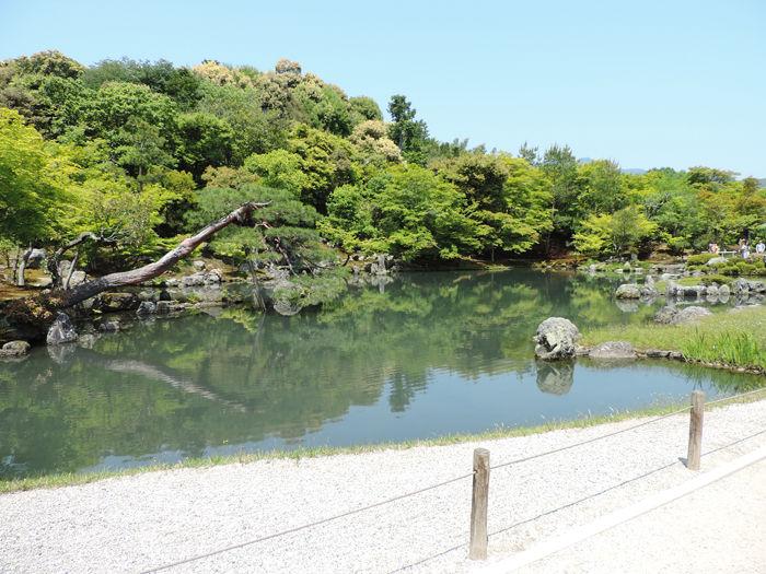 京都世界遺産天龍寺9