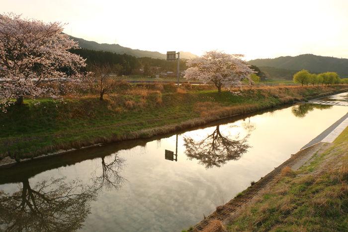 京都・南丹市・若森橋20160406-4