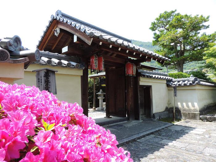 京都世界遺産天龍寺5
