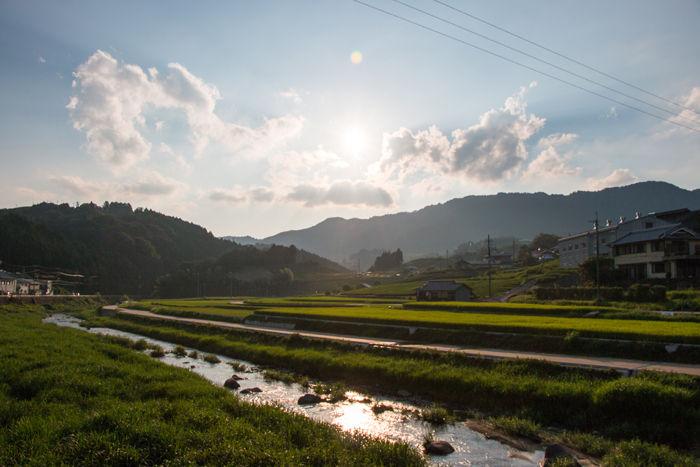 京都・相楽郡和束町・大字白栖地区20160909-2-1