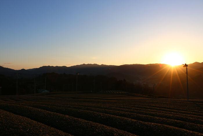 京都・相楽郡和束町・大字白栖地区20160225-9