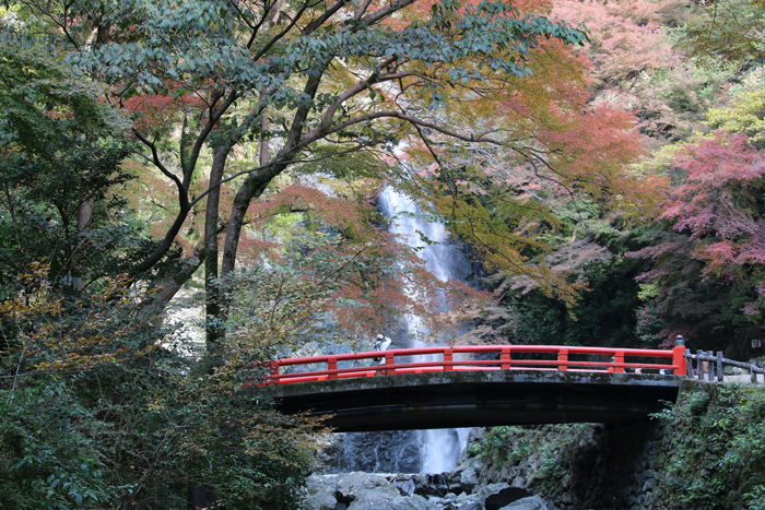 大阪・箕面市・箕面の滝20131120-2-1