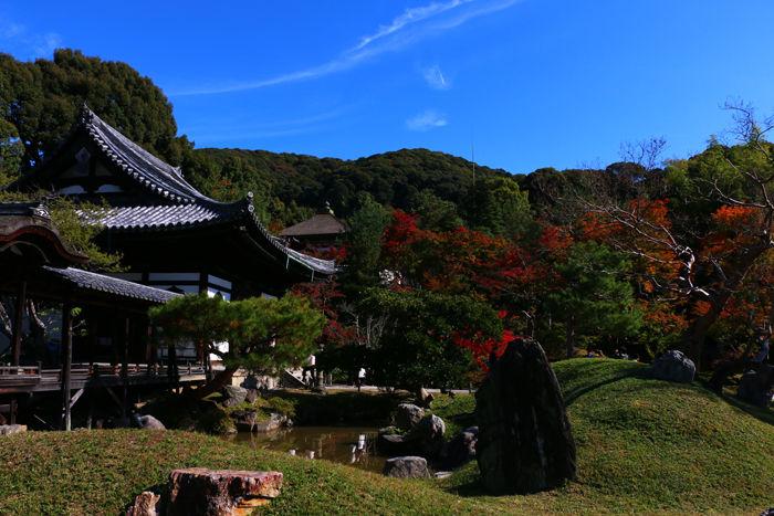 京都・東山区・高台寺20151116-2