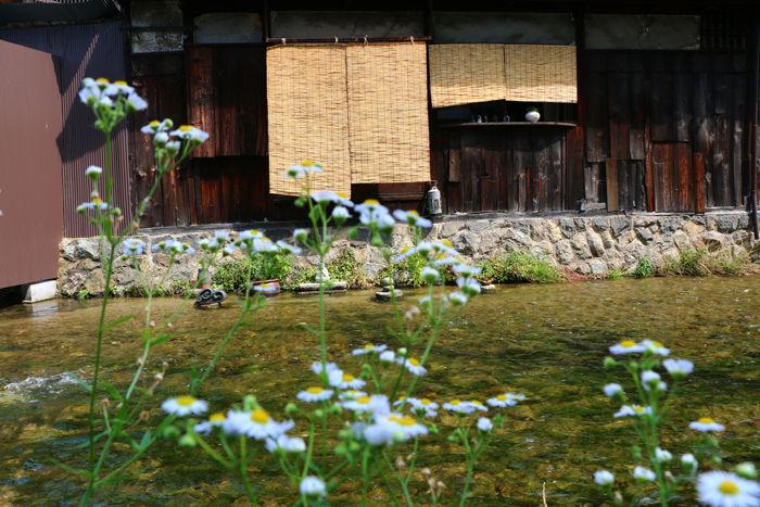 京都・東山区・石泉院町地区20150624-2