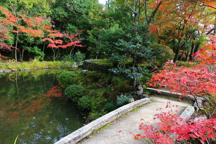 京都・北区・等持院20151121-9