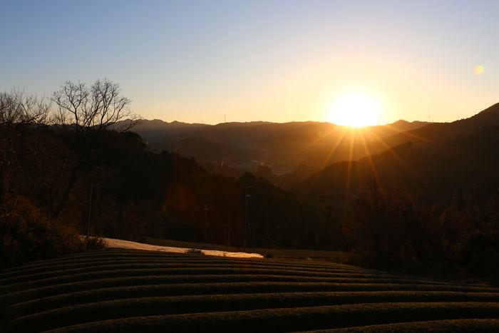 京都・相楽郡和束町・大字白栖地区20160225-12