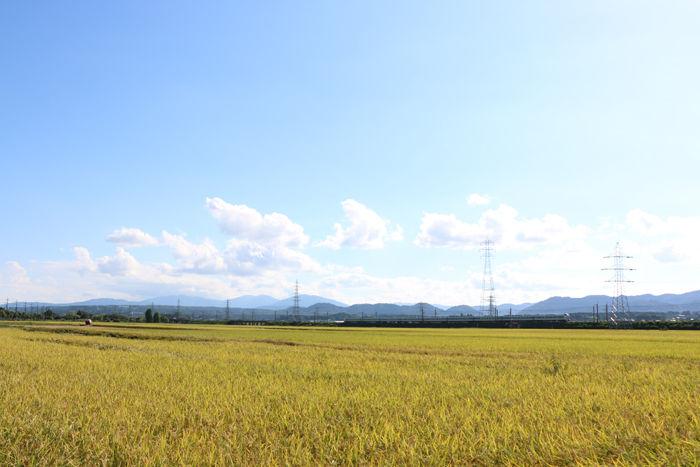 滋賀・高島市・マキノ町中庄地区20160825-1