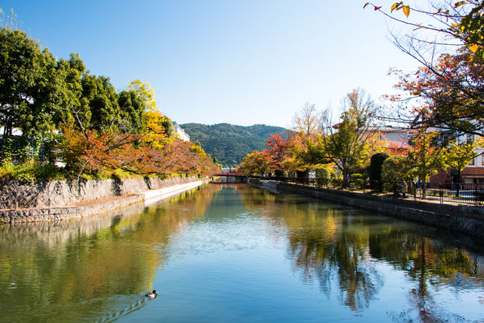 京都・左京区・琵琶湖疏水:岡崎円勝寺町地区20161102-1