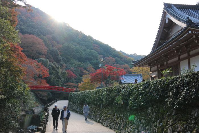 大阪・箕面市・箕面の滝20131120-1-10