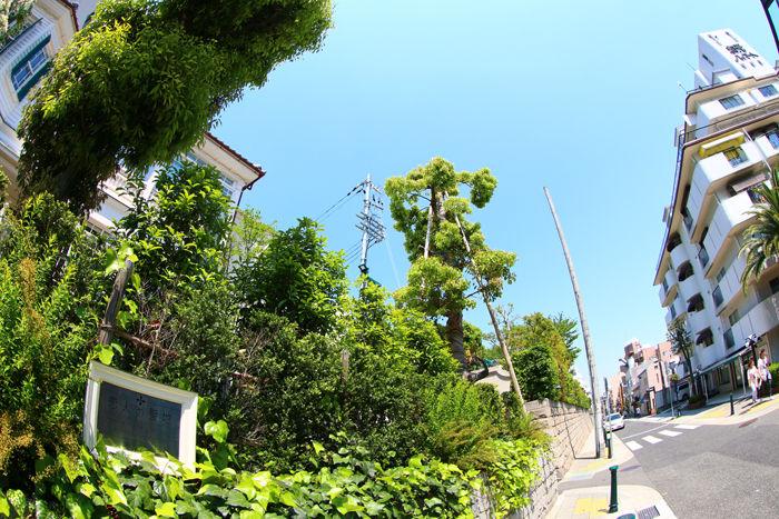 兵庫・中央区・【魚眼風景】北野異人館街20150427-11